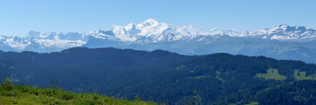A beautiful view of Mont Blanc during summer